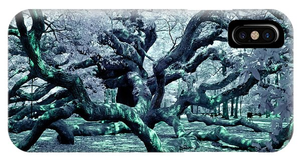 Charleston's Angel Oak IPhone Case