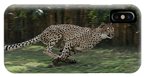 Cheetah Run IPhone Case
