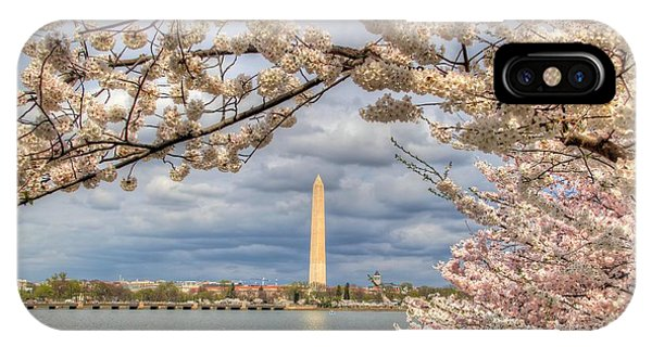 Cherry Blossoms Washington Dc 4 IPhone Case