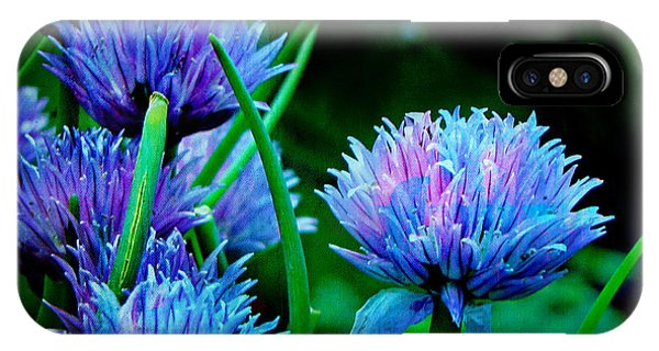 IPhone Case featuring the photograph Chives For You by Deahn      Benware