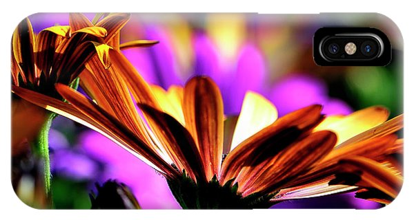 Color And Light IPhone Case
