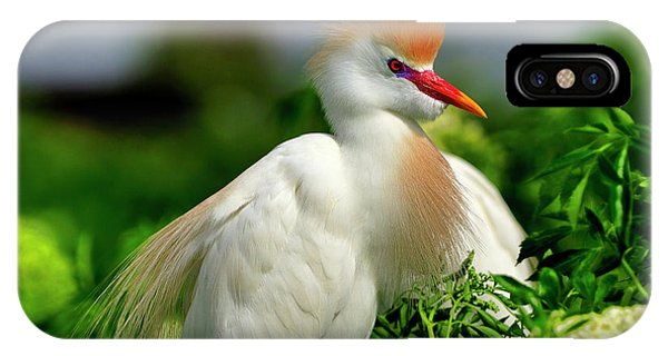 Colorful Cattle Egret IPhone Case