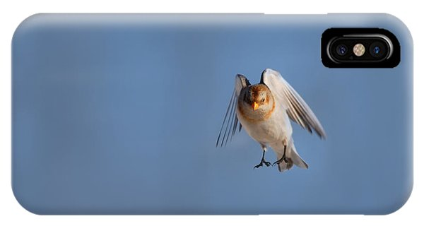 Bunting iPhone Case - Coming In For A Landing by Susan Capuano