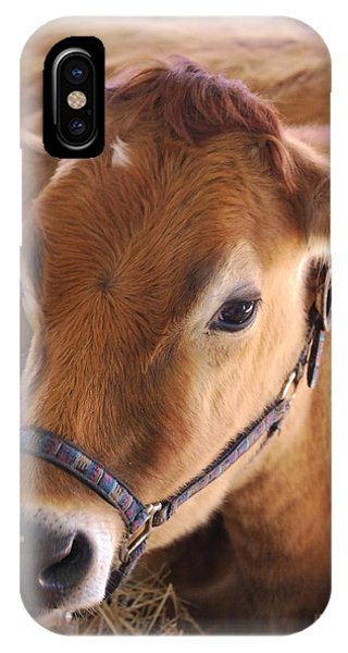 IPhone Case featuring the photograph Contentment by Judy Hall-Folde