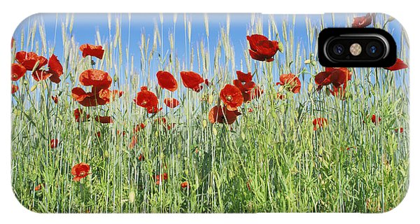 Corn Poppies (papaver Rhoeas) Phone Case by Bjorn Svensson