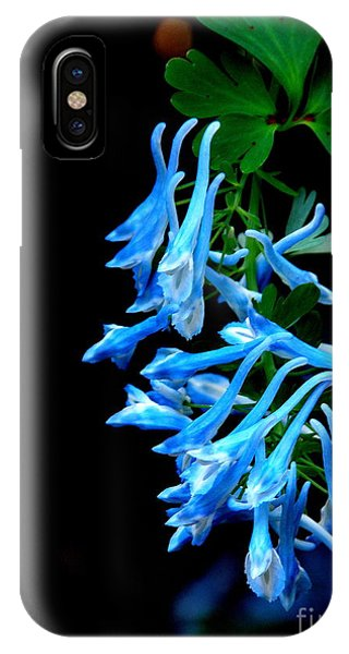 Corydalis  IPhone Case