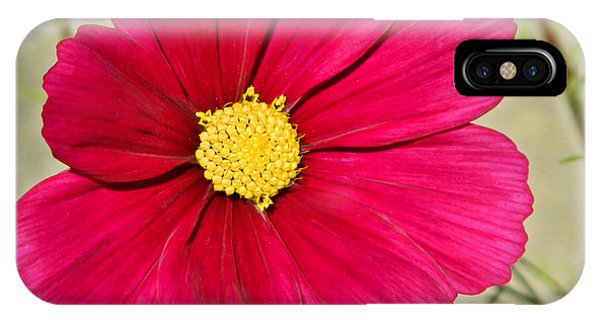 Cosmos Phone Case by Sharon Lisa Clarke