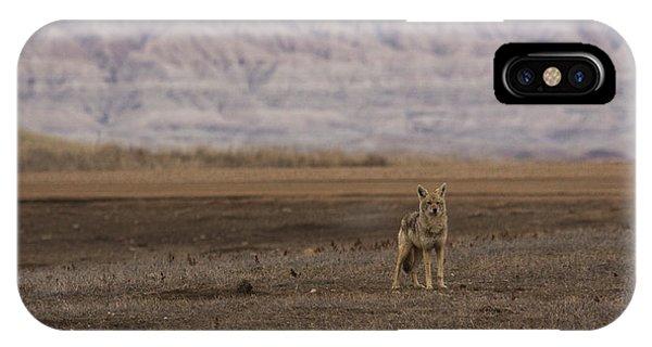 Coyote Badlands National Park IPhone Case
