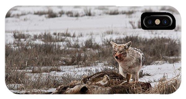 Coyote National Elk Refuge  IPhone Case