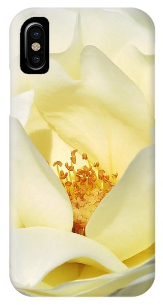 Cream Rose  IPhone Case
