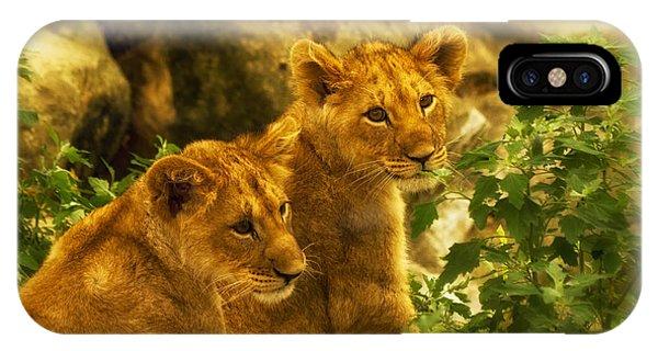 Cubs IPhone Case