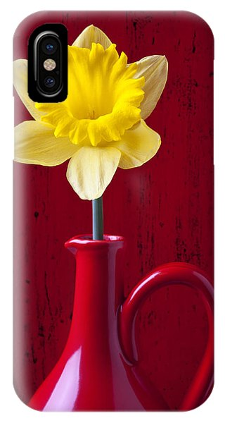 Yellow Trumpet iPhone Case - Daffodil In Red Pitcher by Garry Gay