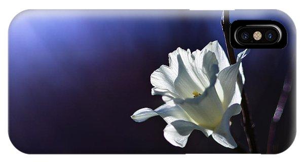Daffodil Light IPhone Case