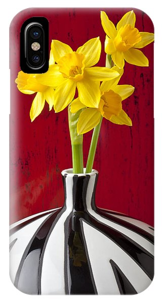 Yellow Trumpet iPhone Case - Daffodils by Garry Gay