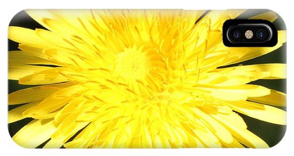 Dandelion Detail IPhone Case