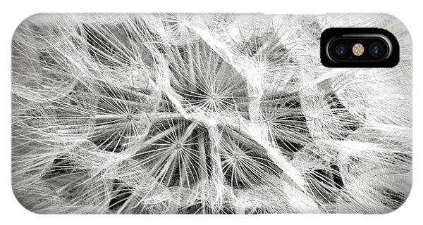 Dandelion In Black And White IPhone Case