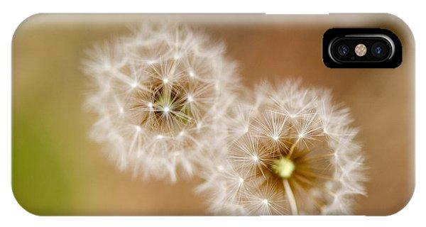 Dandelions Phone Case by Perry Van Munster