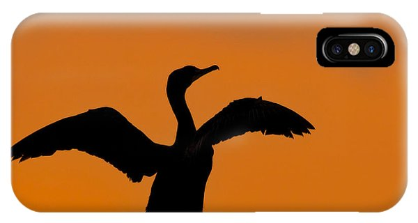 Dawn Of A Double-crested Cormorant  IPhone Case