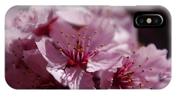 Day Dreaming In Pink IPhone Case