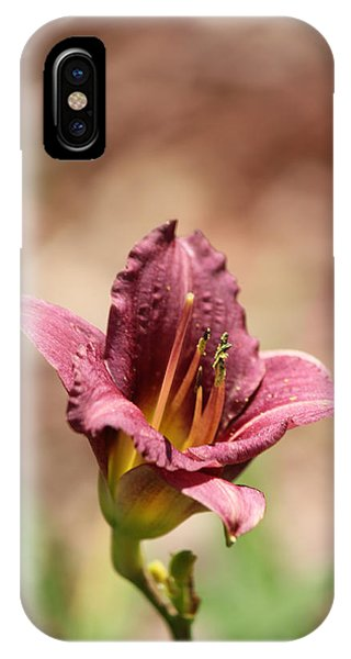 Day Lily IPhone Case