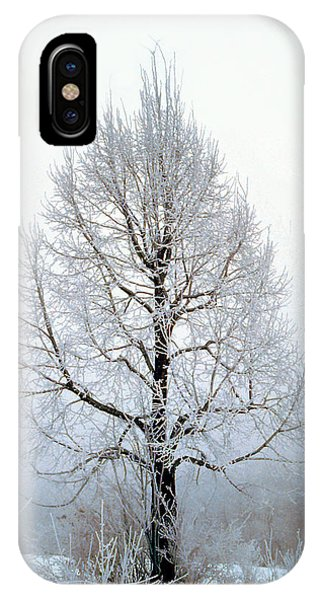 Deep Solitude IPhone Case