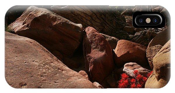 Desert Paintbrush Zion National Park IPhone Case