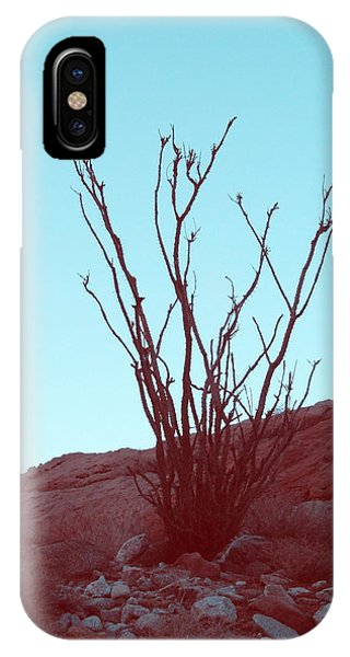 Death Valley iPhone Case - Desert Plant by Naxart Studio