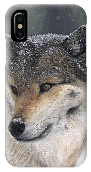 IPhone Case featuring the painting Distraction by Tammy Taylor