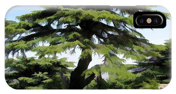 Do-00511 Cedar Forest IPhone Case