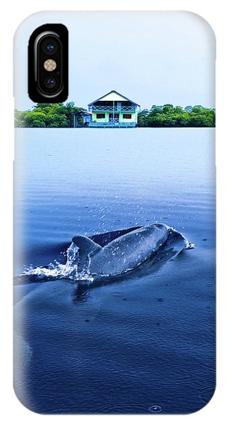 Dolphins By The Mangrove House IPhone Case