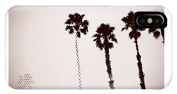 Cartoon iPhone Case - Dotty Palms Today In #calistoga by Peter Stetson