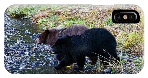 Bear Creek iPhone Case - Double Trouble by Mike  Dawson