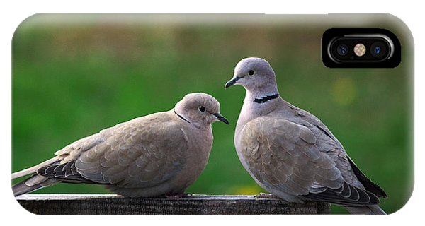 Doves IPhone Case