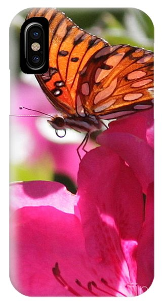 Agraulis Vanillae iPhone Case - Dreaming Of Butterflies And Pink Flowers by Carol Groenen
