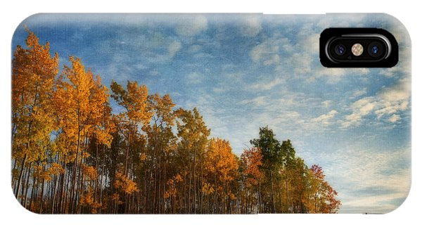 Treeline iPhone Case - Dressed In Autumn Colors by Priska Wettstein