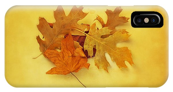 Dried Autumn Leaves IPhone Case