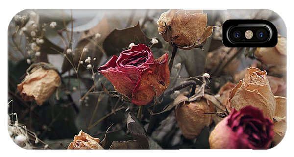 Dried Roses IPhone Case
