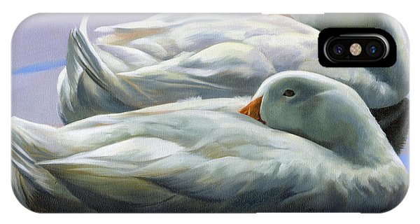 Duck Nap IPhone Case