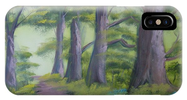 Duff House Path IPhone Case