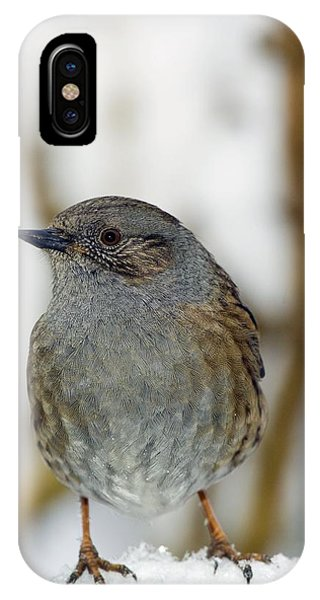 Dunnock Perched On A Garden Fence Phone Case by Duncan Shaw