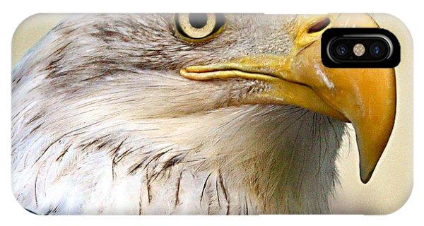 Eagle Portrait IPhone Case