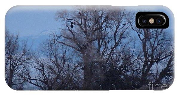 Eagle Tree Phone Case by David Bearden