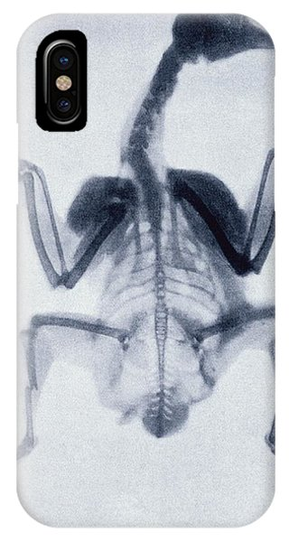 Early X-ray Of A Bird Phone Case by Sheila Terry