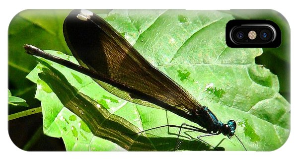 Ebony Jewelwing Damselfly II Phone Case by Bruce W Krucke