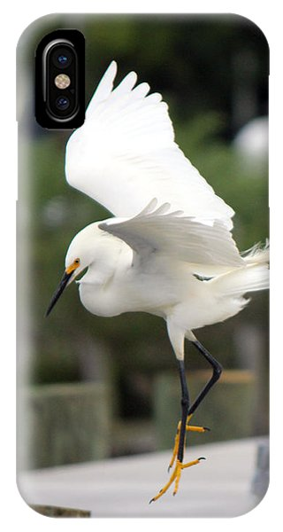 Egret Ballet IPhone Case