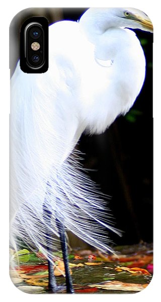 Elegant Egret At Water's Edge IPhone Case