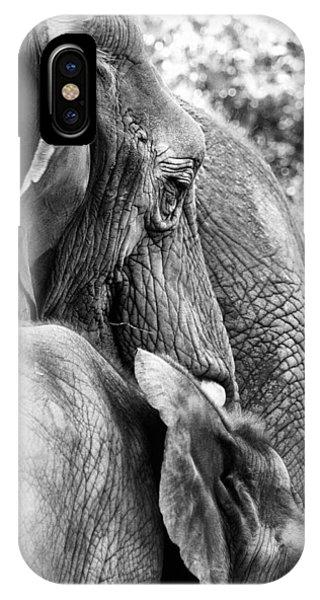 Elephant Ears IPhone Case