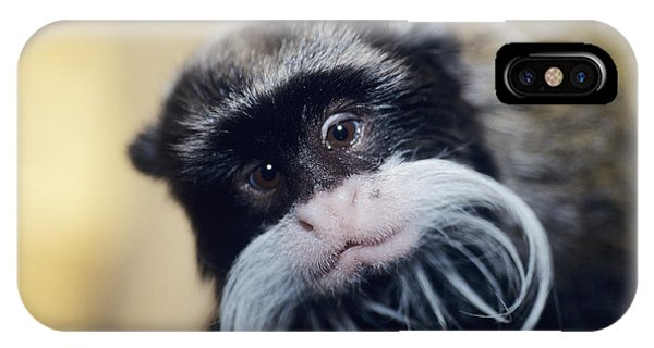 Emperor Tamarin Phone Case by David Aubrey