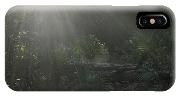 Enchanted Glen IPhone Case