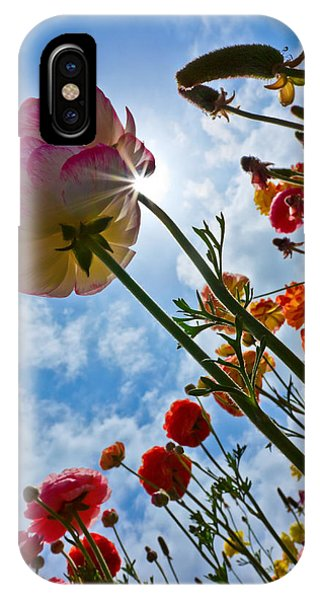 Endless Possibilities  Phone Case by Donna Pagakis